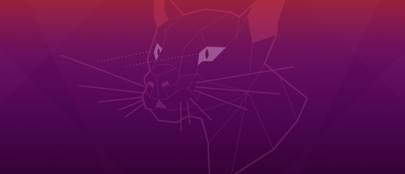 Ubuntu 20.04 Wallpaper
